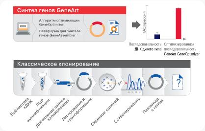 GeneArt_Basic_Art01