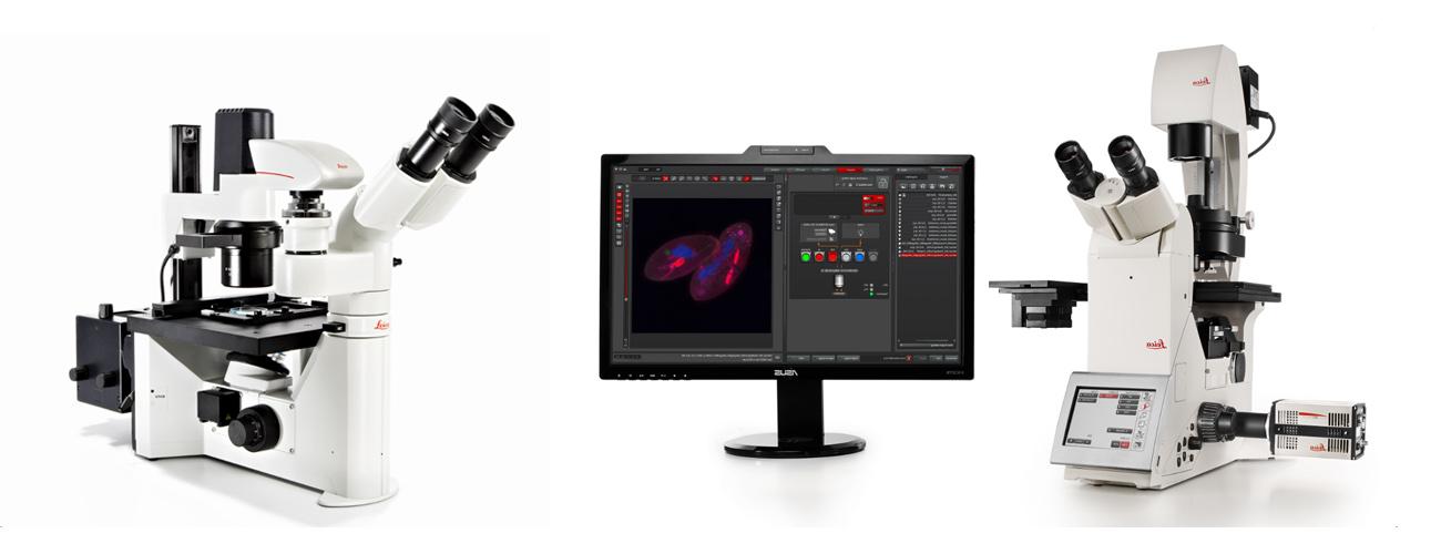 Инвертированные микроскопы для работы с культурами клеток
