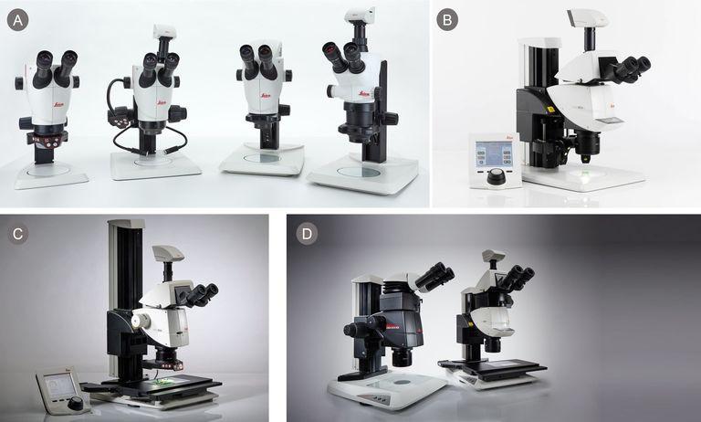 Рисунок 1. Примеры микроскопов компании Leica A) серия S9 Greenough, B-D) серия M205 CMO series.