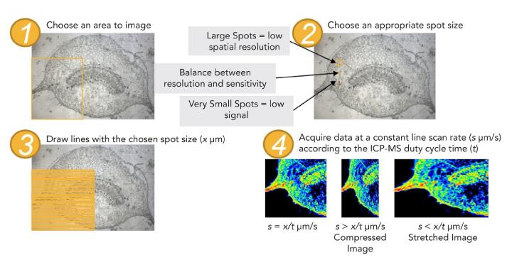 Рис. 1: Процедура получения изображений с использованием МС-ИСП-ЛА для избежания потенциальных артефактов.
